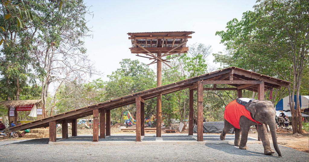 เรียนรู้การอยู่ร่วมกันระหว่างคนกับช้างผ่านสถาปัตยกรรมบ้านช้างบ้านคน บนเวทีงาน Venice Biennale 2021